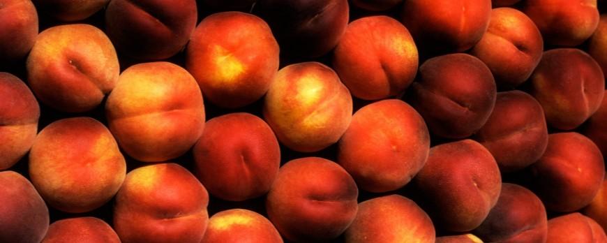 La campaña de fruta de este año está siendo nefasta para Aragón y Cataluña