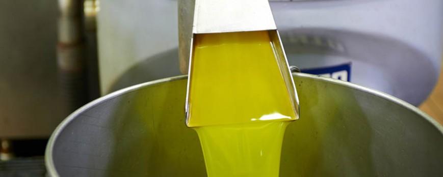 Aumenta el precio del aceite de oliva, manteniendo pocas diferencias entre las distintas calidades