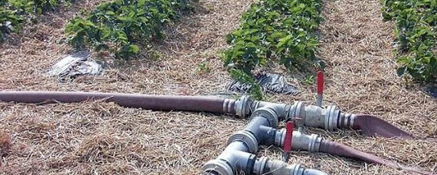 El Congreso aprueba 1.000 millones de euros en créditos ICO para paliar la sequía