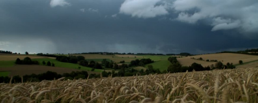 La agencia Estatal de Meteorologia preve un invierno mas caluroso y con lluvias en la media