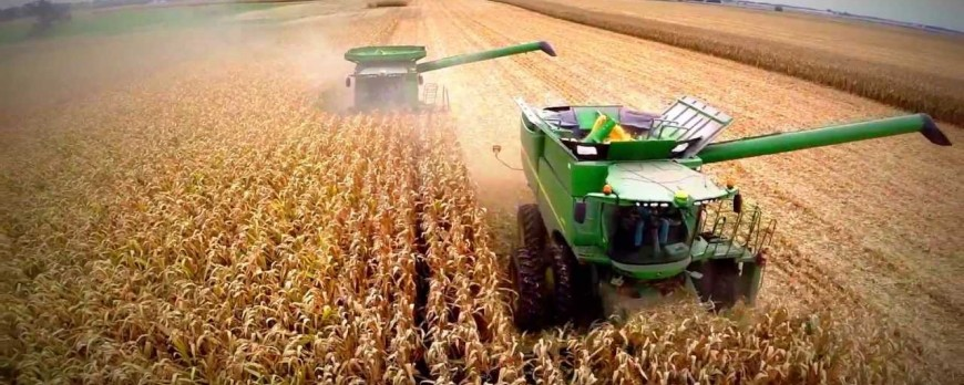 El precio de los cereales a la espera de ver los efectos de la ola de frío en Estados Unidos