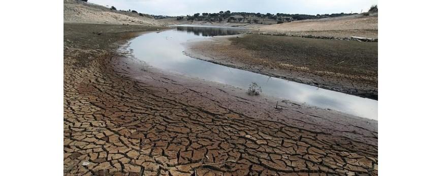 El ministerio de Agricultura ha presentado los resultados de las medidas contra la sequía de 2017