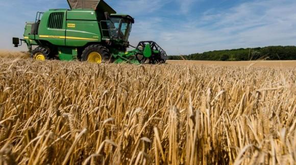 Subida anual de los precios del cereal por la sequía y la baja producción