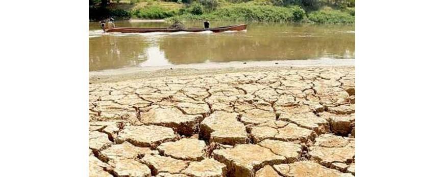 Se aprueban las medidas contra la sequía 2017-2018 con la exención del IBI