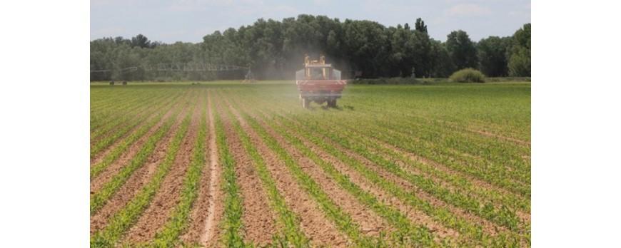 Hacienda aumentará el control sobre las parcelas agrícolas a través de la PAC