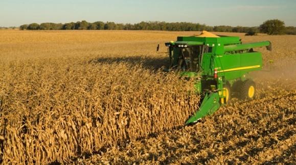 Descensos de los precios de cereales en los mercados mayoristas, incluido el Maíz