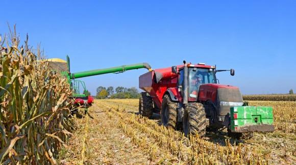 Los bajos precios marcan la tónica de la cosecha del cereal