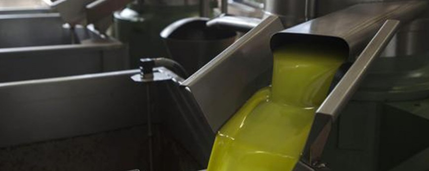 El precio del aceite de oliva se mantiene y con precios al alza