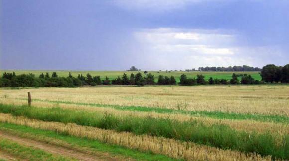 Según AEMET, se espera un otoño con altas temperaturas, después del verano cálido y húmedo