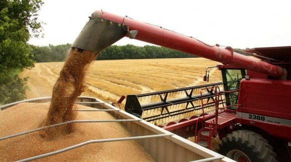 Subidas generalizadas de precios en el sector cerealista