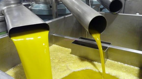 Solicitan el almacenamiento privado de aceite de oliva para evitar la caída del precio