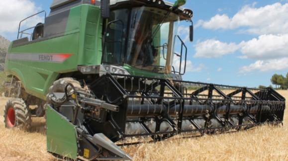 El precio de los cereales en marzo continúan en descenso, aunque más moderados