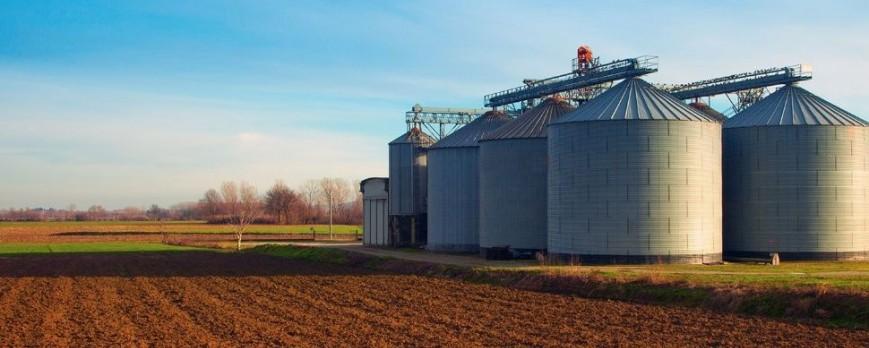 La campaña del cereal será más corta y con menos rendimiento aunque llueva