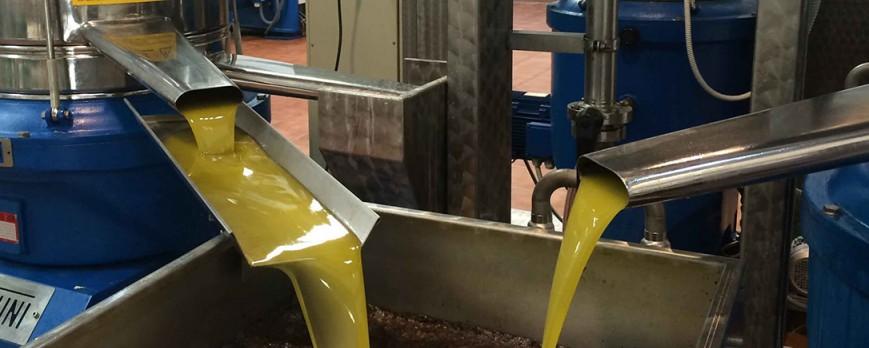 El aceite de oliva ha bajado su cotización también en Semana Santa