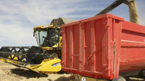Otra Semana con descensos en los precios mayoristas de los cereales