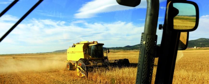 La tónica de bajada en los precios de los cereales se da también esta semana