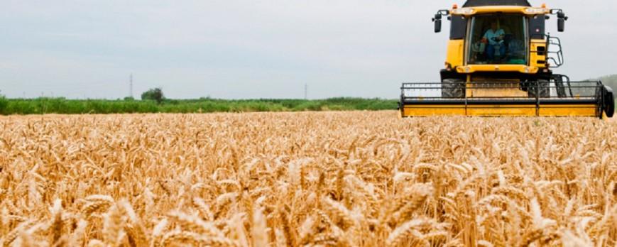 Los agricultores celebran San Isidro con mala previsión de cosecha de cereales