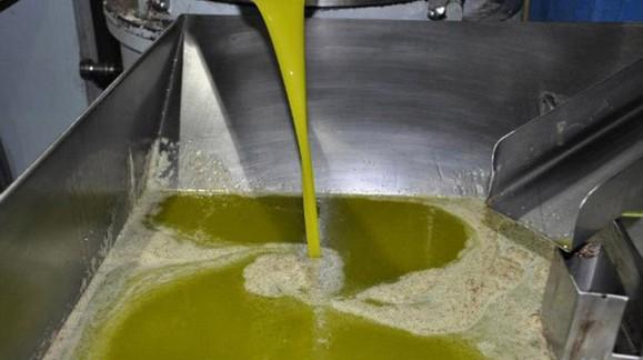 Ninguna protesta hace bajar el precio del aceite de oliva en el mercado