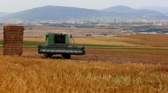 Las lluvias el mes de mayo y junio determinarán una buena cosecha de cereales o mala