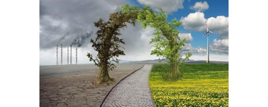 Más del 90% de los agricultores reconocen la existencia del cambio climático
