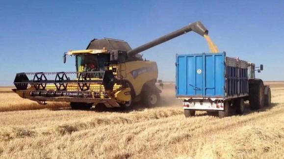 La cebada se sitúa en 171 euros la tonelada y el precio de la paja de 1ª al doble que al año anterior