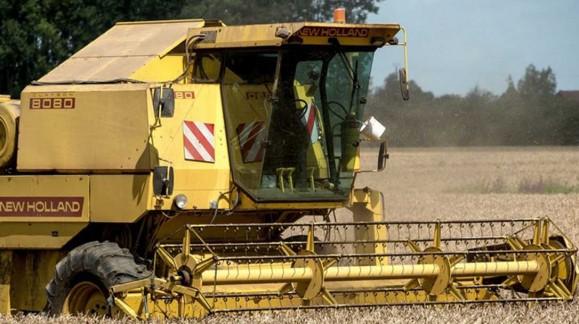 Los precios mayoristas de cereales continúan acumulando más caídas