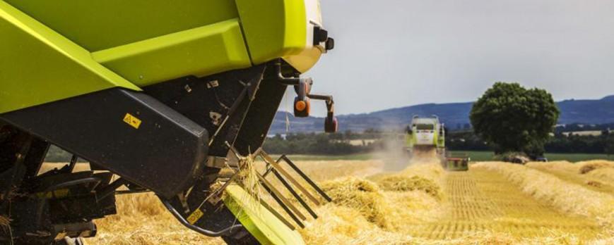 La campaña de los cereales ya finalizada muestra nuevos descensos de precios