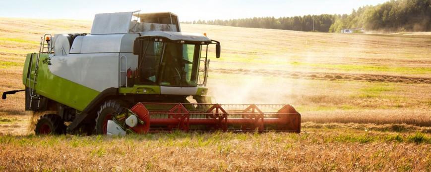 La especulación de los precios de los cereales puede ser el causante del desplome en agosto