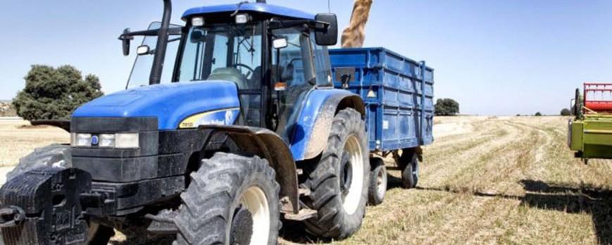 El precio de los cereales sube una semana más en octubre