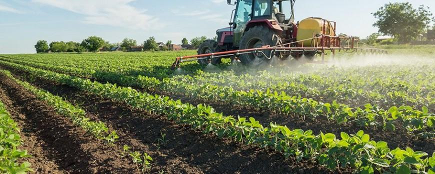 Los agricultores perciben 5.263 millones del Feaga hasta el mes de Agosto