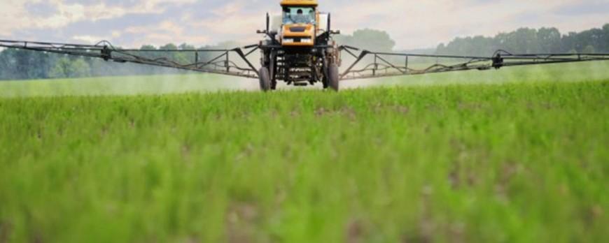 ONG Francesa encuentra Glifosato en cereales y legumbres